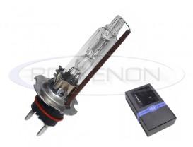 Bec Xenon Xtreme Vision - H1 Metalic 5500K